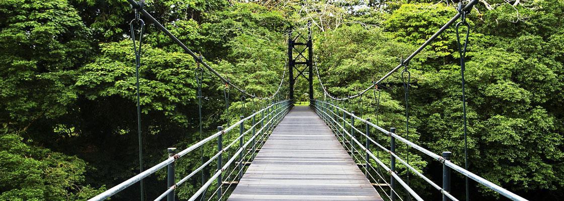 Služby následní péče Mosty